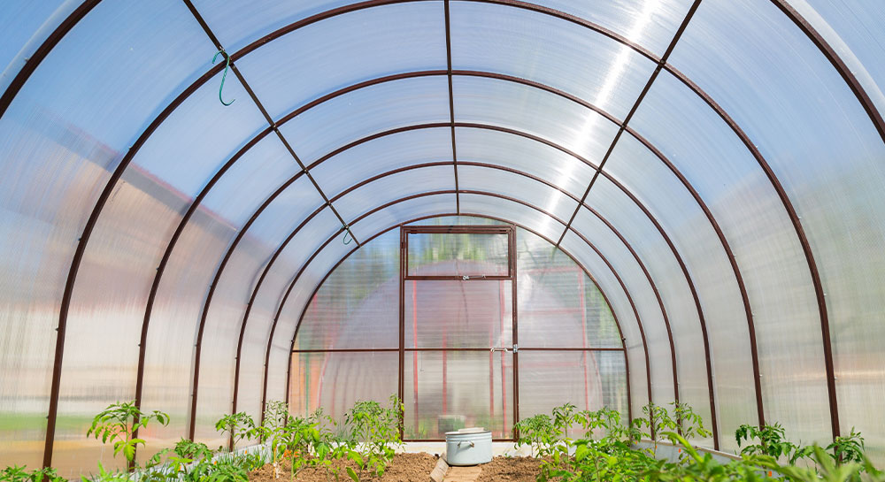 Greenhouse Multi-wall Polycarbonate
